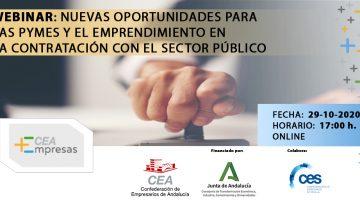 11_Sector_publico